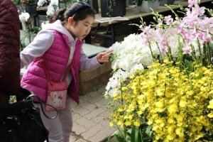 봄소식 전하는 향기로운 풍경
