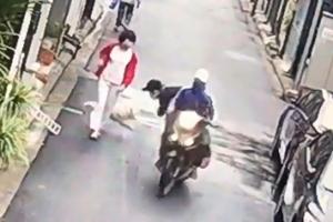 베트남 '개도둑'의 신기에 가까운 기술
