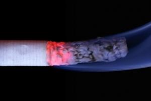 KLM항공, 7월부터 기내 면세담배 판매 중단