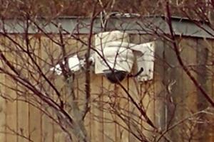 [포토] 'CCTV는 무엇을 봤을까?'…안희정 전 충남지사 관사·비서실 압수수색