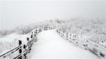 '춘분인데 눈이 펑펑' 계…
