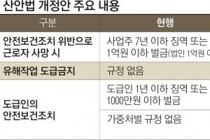 """""""산재 땐 징역형 형평성 어긋"""" """"실제 처벌 줄 수도"""""""