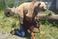'야생곰을 애완곰처럼' 전생에 곰이었던 남성(?)