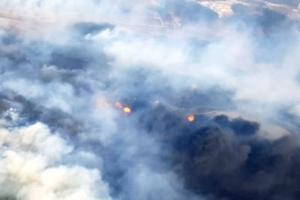 고성 산불 바닷가 방향 확산…주민 445명 대피