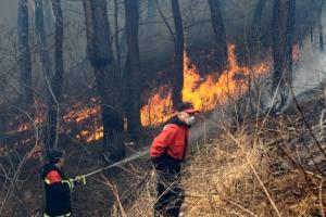 고성 산불 산림 30㏊·주택 2채 소실…헬기 23대 투입 진화 총력