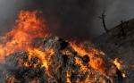 강원 고성에 산불…꺼질 …
