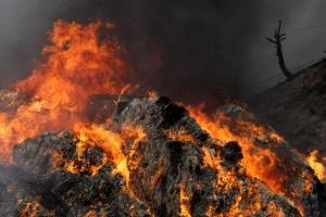 [포토] 강원 고성에 산불…꺼질 줄 모르는 불길