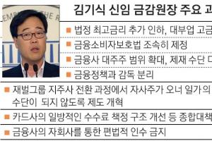 재벌 압박·금융 개혁… '강한' 금감원 예고