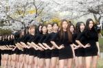봄 햇살 받으며 '벚꽃 런…