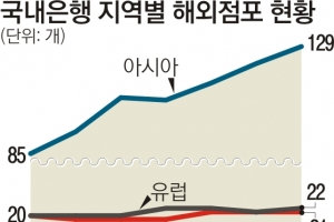 은행 '동남아 점포 사랑' 판 키우려다 판 엎을라