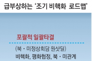 """靑 """"북·미 접촉 잘되고 있다""""…'18개월 내 조기 비핵화' 급부상"""