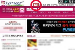 """법원 """"소라넷 운영자 '여권무효'는 정당""""...소환가능성 커져"""