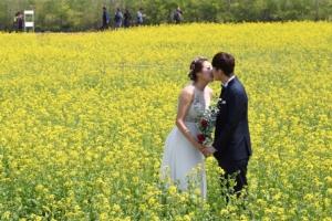 [포토 다큐&뷰] 새하얀 미소, 노오란 손짓, 분홍빛 떨림… 첫사랑 같은 봄날