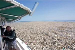 """플라스틱 먹는 변종효소 발견…""""환경오염 획기적 해결 기대"""""""