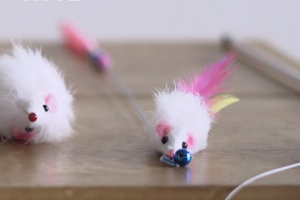 고양이 장난감의 진실…일부 실제 고양이 털로 만들어져