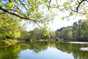 초록 숲으로 역사 속으로