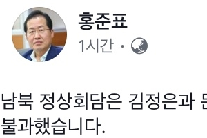 """홍준표 """"김정은 불러준 대로 받아적어""""…한국당도 판문점 선언 평가절하"""