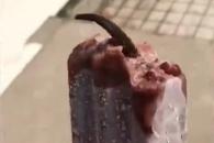 아이스크림 속 선명한 쥐꼬리 '충격'