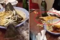 식탁 위 요리된 물고기가 살아 움직이는 순간