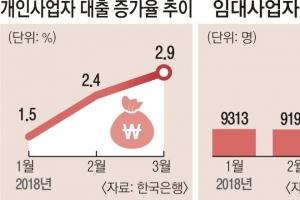 [경제 뉴스 깊이 보기] 가계대출 풍선효과·영세업자 '빚 굴레'