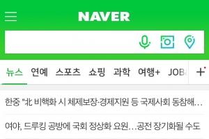 """""""아웃링크 선택적 도입은 꼼수… 여론조작 막기 어려워"""""""