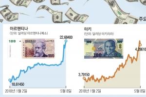 """'삼각 회오리'에 아르헨·터키 휘청… """"한국엔 미풍 그칠 것"""""""