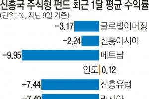 """베트남마저 수익률 -9.95% 곤두박질… """"신흥국 투자 줄이면서 이슈 지켜봐야"""""""