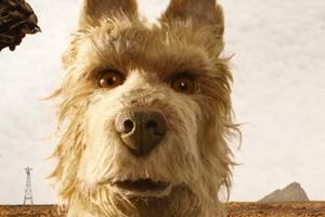 무한 상상력 선보이는 웨스 앤더슨표 애니메이션 '개들의 섬' 예고편