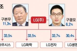 LG 구본무 회장 와병에 '4세 경영' 가속도