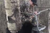 나무에서 소년 발견한 야생 곰의 반응