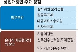 """[뉴스 분석] """"총수 전횡 막는 게 우선"""" vs """"투기자본서 경영권 방어"""""""