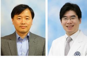 연세대 연구팀, 난치성 위암 치료약물 개발