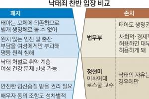 """""""태아도 생명체"""" vs """"모체 부속된 생명""""…  헌재 달군 '낙태죄 공방'"""