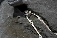 폼페이 유해 발굴, 최후의 날 비극 담겨