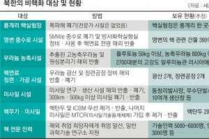 김영철·폼페이오 CVID-CVIG '빅딜'… 열쇠는 美 보상 수준