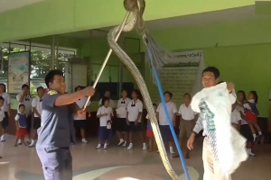 '손 씻다 물릴 뻔', 학교 화장실에 침투한 4미터 비단뱀
