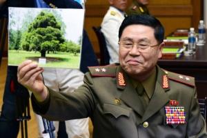 남북장성급회담 북측 대표, 갑자기 소나무 사진 꺼내든 이유