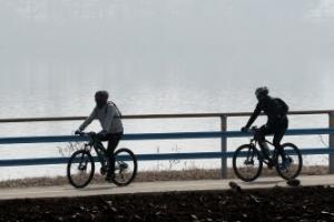작년 자전거 사고 5% 줄었는데…사망자는 12% 늘었다