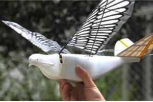 날갯짓하는 '비둘기 드론'