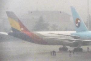 [포토] 충돌한 대한항공-아시아나기