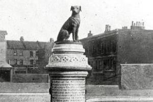 111년 전 영국에서 있었던 강아지 동상 습격 사건