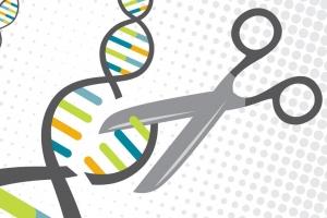 유전자 가위 이용해 바이러스 질환 잡는다