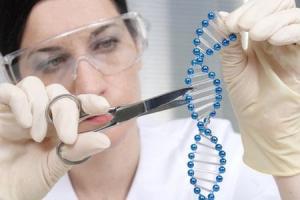 말라리아도 없애고 심장병도 고치는 '유전자 가위'
