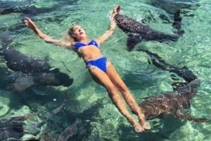 상어 두 마리에 깨물린 19세 모델 과연 '멍청한 금발'일까?
