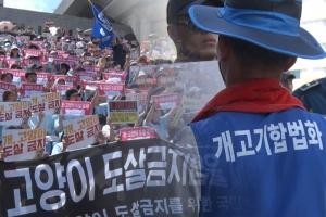 개 도살 금지 vs 생존권 보장, 개 식용 두고 찬반집회 열려