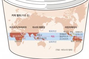 [월드 Zoom in] 커피 한잔의 여유? 30년 뒤 금값 될라