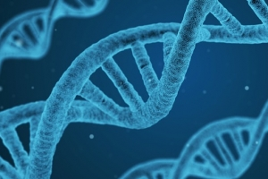 한국 연구진, DNA 이중나선의 비밀 풀었다