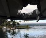 하와이 관광보트에 '용암…