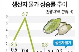 수박 15%·무 39%↓…6월 생산자물가 농산물 하락에 '보합'