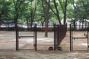 '소멸 위험' 전국 1위 의성군 반려동물 테마공원 조성 강행 논란